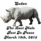 Farewell to Sudan the last male northern white rhinoceros by Nerd Digs