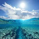 Over under ocean seascape sunlight with reef underwater by Dam - www.seaphotoart.com