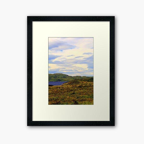 Summer  Colours Framed Art Print