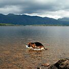 Keeloh Loch Maree by Alexander Mcrobbie-Munro