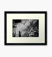 B/W MacroFlower Five Framed Print
