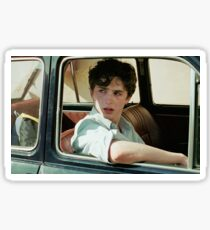 call me by your name / timothee chalamet / elio perlman Sticker