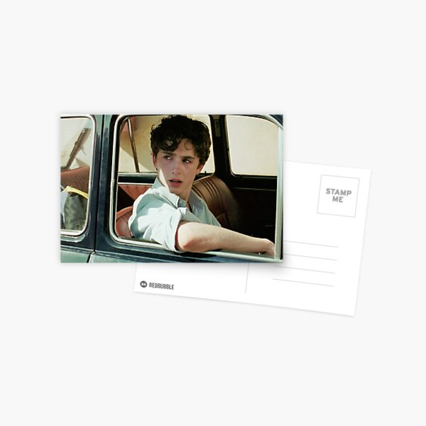 call me by your name / timothee chalamet / elio perlman Postcard