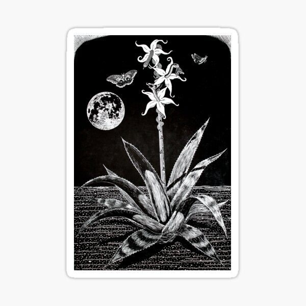 Night Blossoms Woodcut Sticker