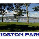 Kidston Park by Alexander Mcrobbie-Munro