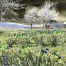Digital daffodils by Alexander Mcrobbie-Munro