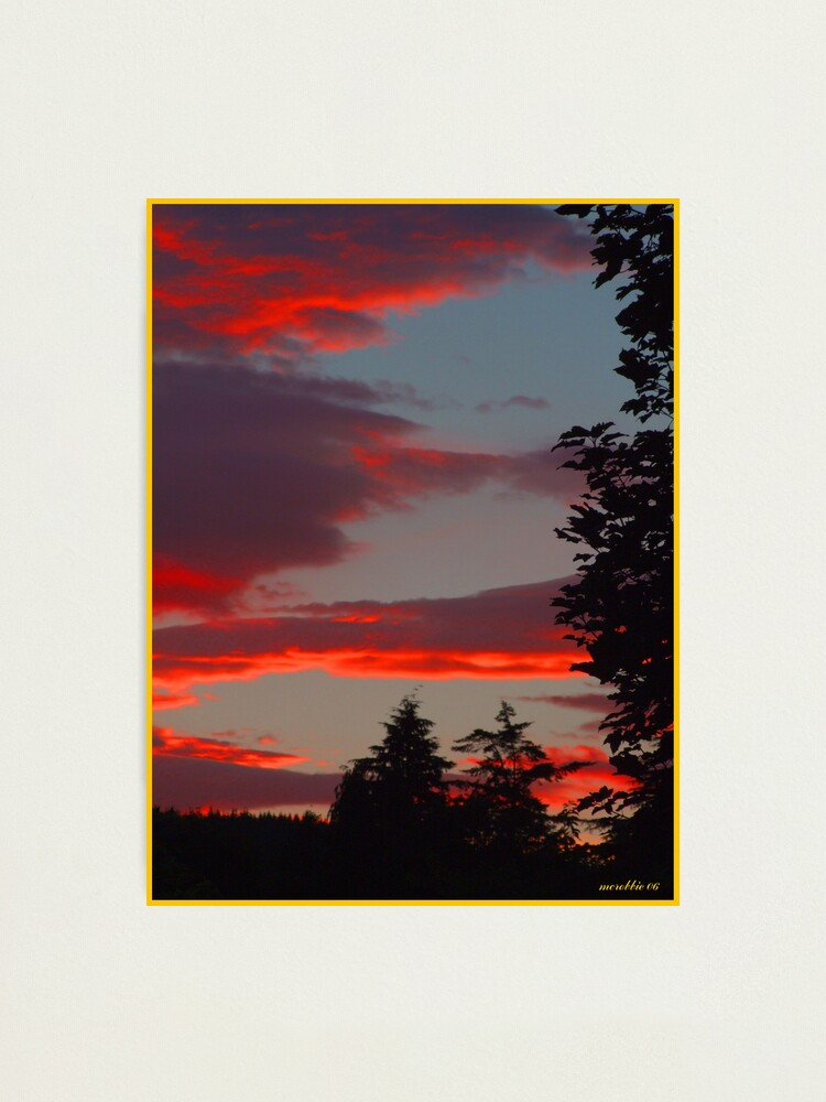 Alternate view of Sunset  and  Trees Photographic Print