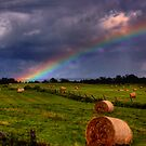 Rainbow Over Hayfield, Ontario by Wayne King