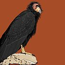 California Condor (support the Los Angeles Zoo) by BennuBirdy