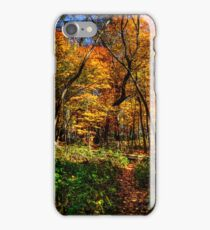 Forest Footpath In Autumn at Johnson's Mound iPhone Case/Skin