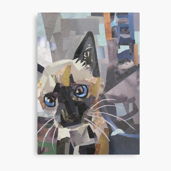 The Curious Kitten Metal Print