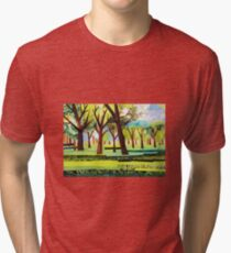 Afternoon in the Park Tri-blend T-Shirt