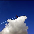 Into The Wild Blue Yonder by dotstarstudios