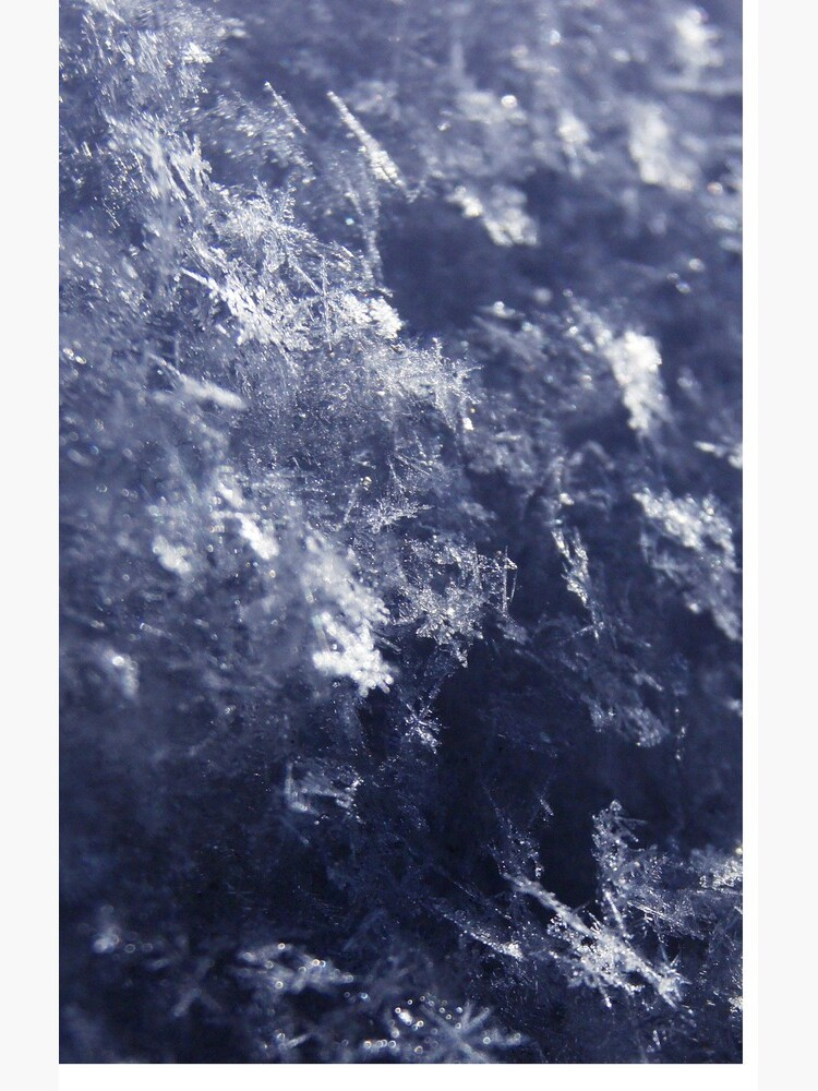Frosted Snowflakes HDR by dotstarstudios