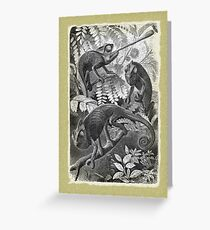 Chameleon Etching Greeting Card