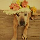In my Easter Bonnet by Elaine Teague