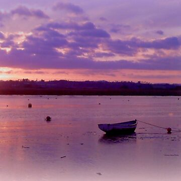 Alone on the water by Sita