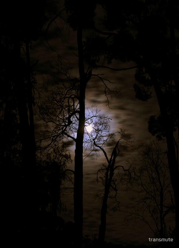 Luna by transmute