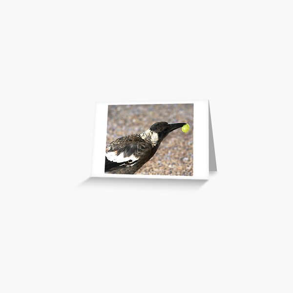 A bird with a Grape Greeting Card