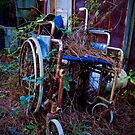 Wheel Chair For The Environment by georgiaart1974
