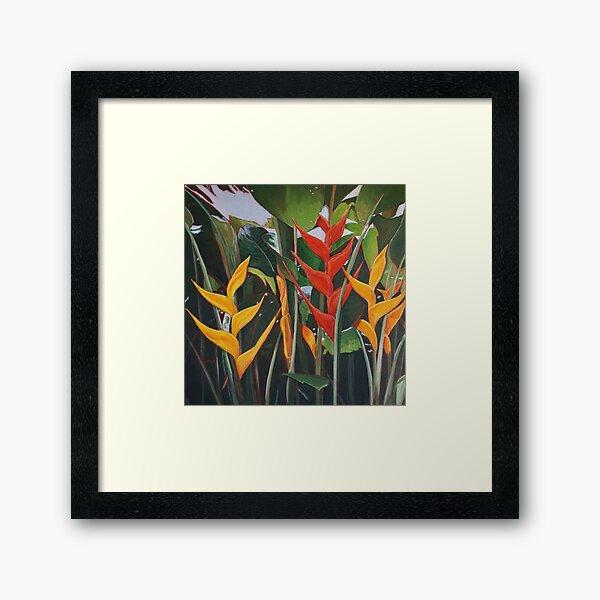 Beharry Heliconia Framed Art Print