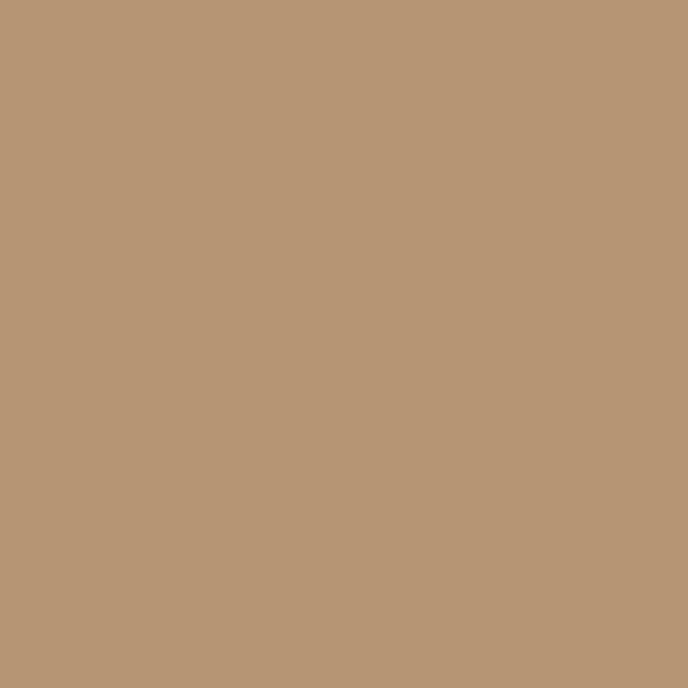 PANTONE 16-1334 TCX Tan by kekoah