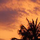 sky on fire by djTrickyOne