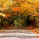 Fall Road Home by Karen K Smith