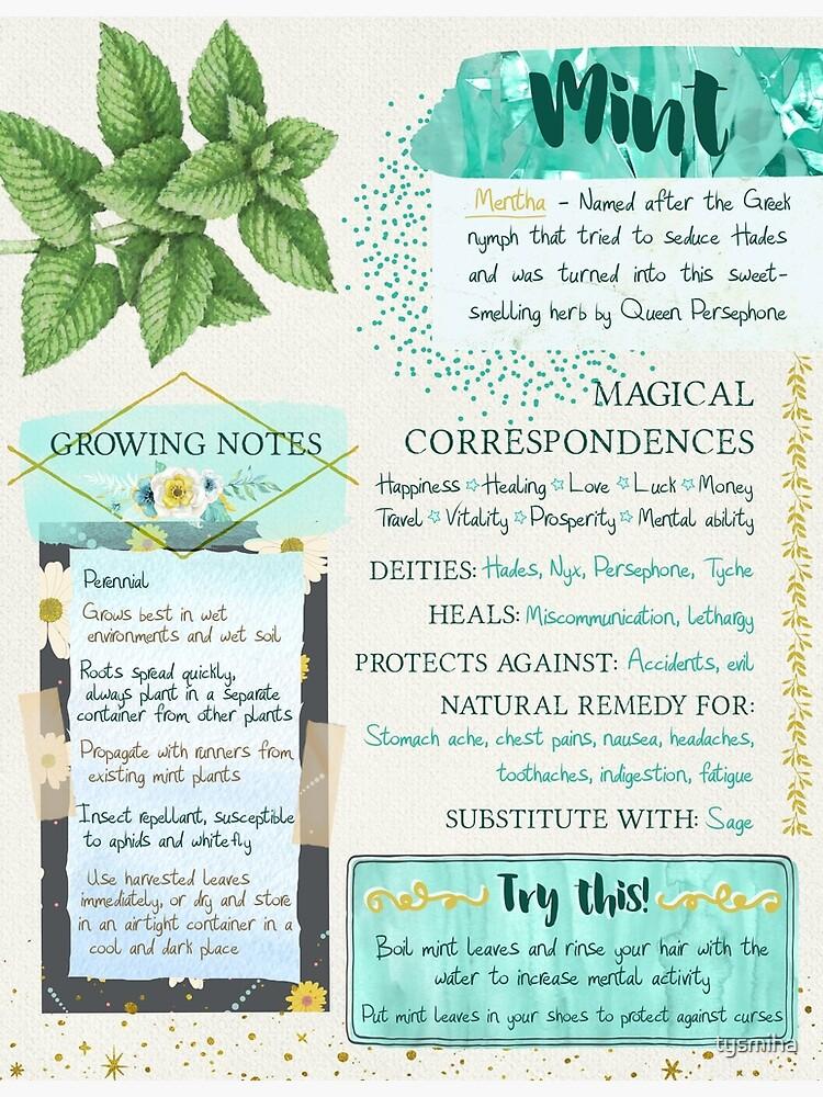 Mint Grimoire Page | Poster