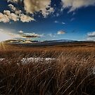 Ribblehead Viaduct by Lea Valley Photographic