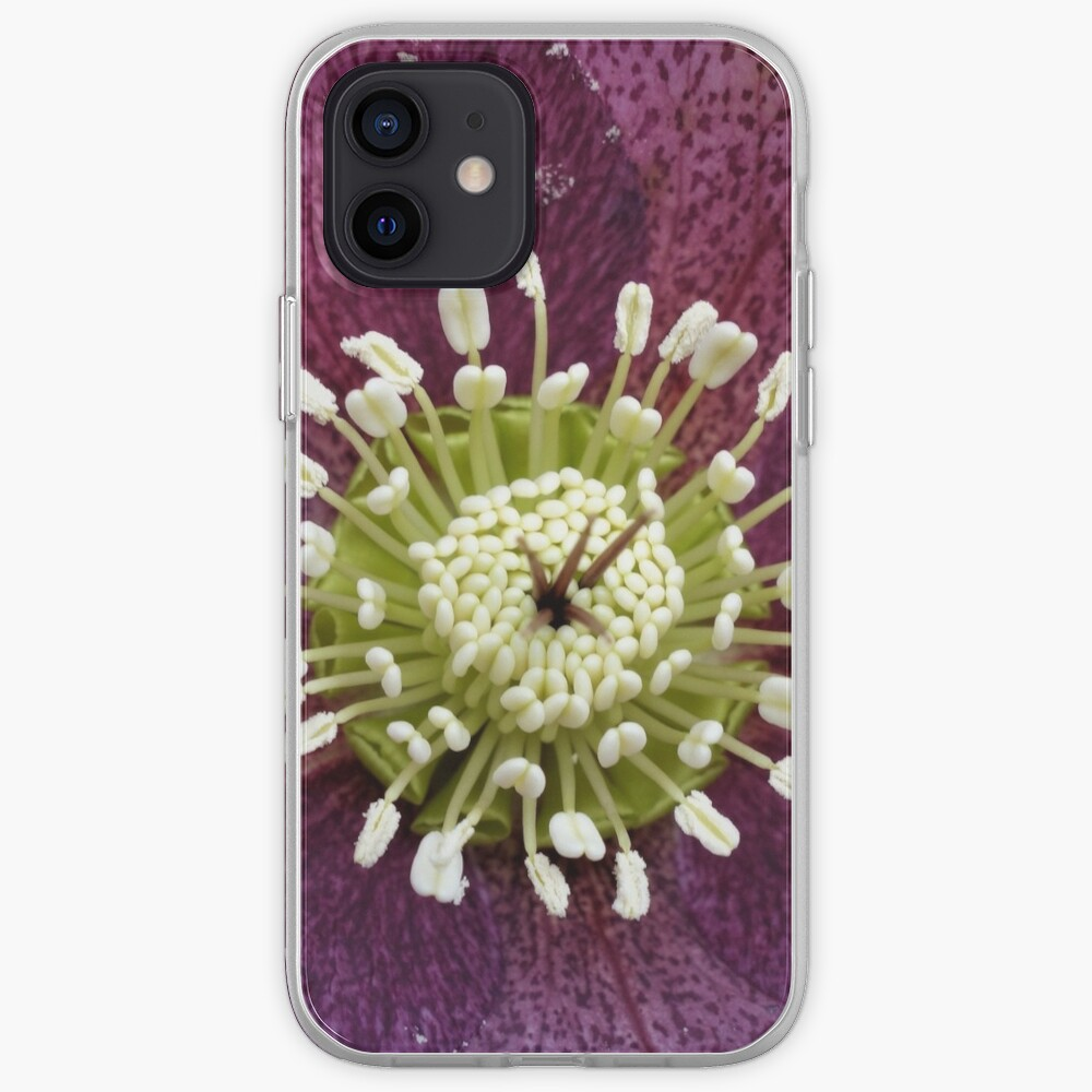 Helleborus iPhone Case & Cover