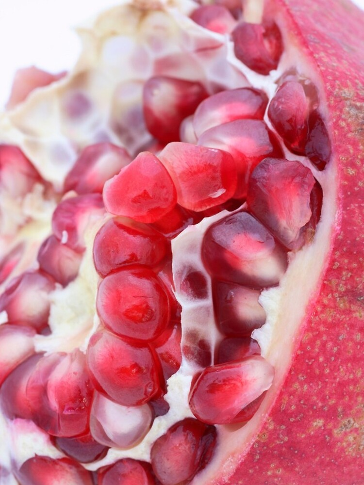 Pomegranate by gardenpictures