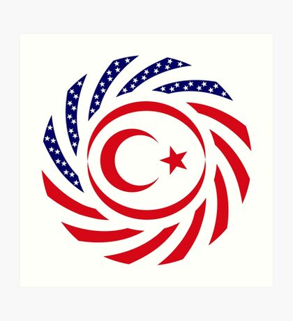 Northern Cyprus American Multinational Patriot Flag Series Art Print