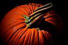Pumpkin by John Schneider