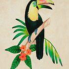 Toucan Art by Walter Colvin
