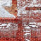 Brick Walls of New York. 2 by Alex Preiss