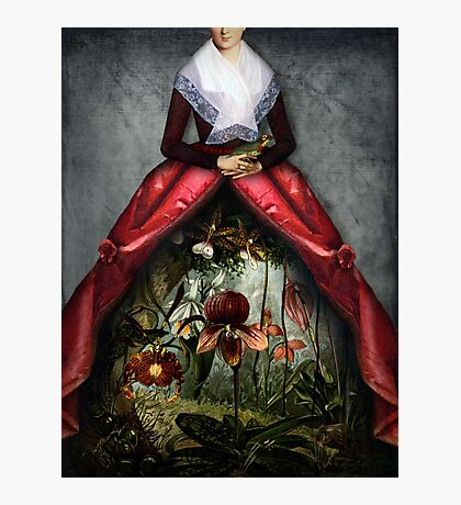 Her garden Photographic Print