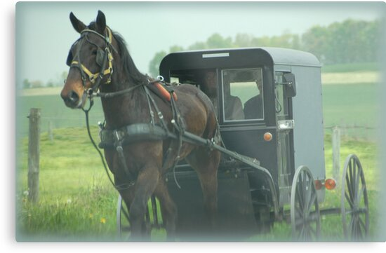Lancaster County by Dyle Warren