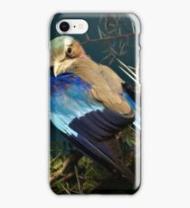 Natural environment diorama - bird with blue wings  iPhone Case/Skin