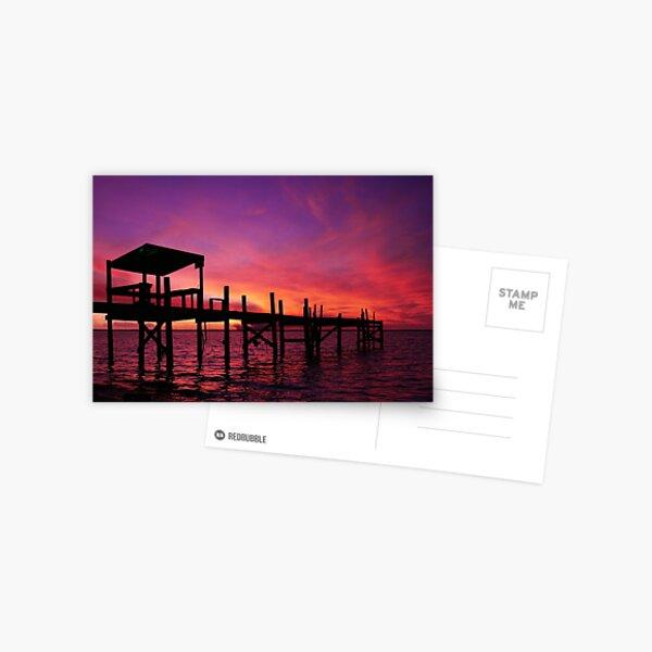 Purple Fire Sunset Postcard