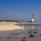 Barnegat Lighthouse by shawng13