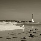 Barnegat Lighouse (black & white aged) by shawng13