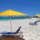 The Beach at Treasure Cay  by Amanda Diedrick