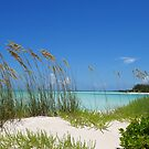Treasure Cay Beach II  by Amanda Diedrick