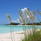 Treasure Cay Beach III by Amanda Diedrick