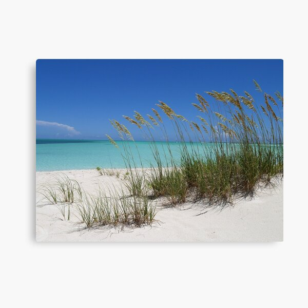 Sea Grass at Treasure Cay  Canvas Print