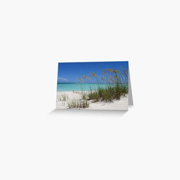 Sea Grass at Treasure Cay  Greeting Card