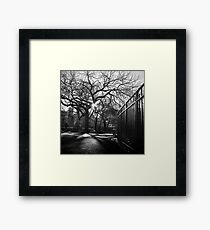 Tompkins Square Park Framed Print