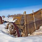 Centenarian Wagon by Jerry Walter