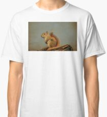American red squirrel Classic T-Shirt